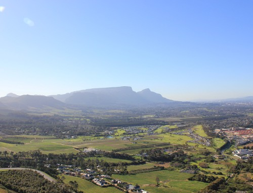 Hop On the Cape Town Sightseeing Bus