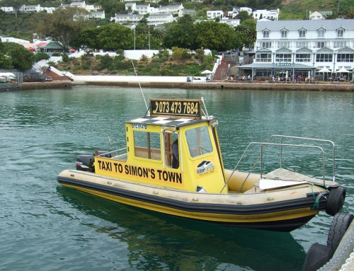 Explore False Bay on the Water Taxi